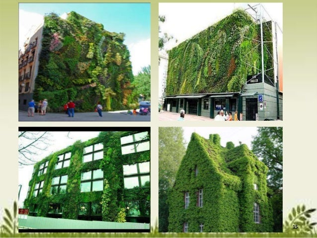 Rooftop And Vertical Gardens As An Adaptation Strategy