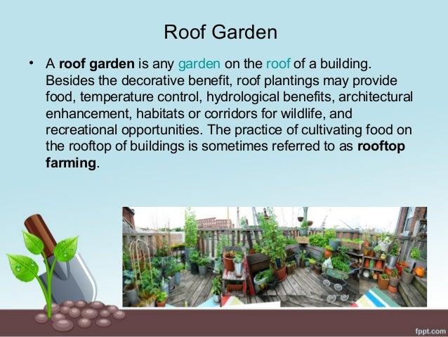 Roof. Roof top gardening