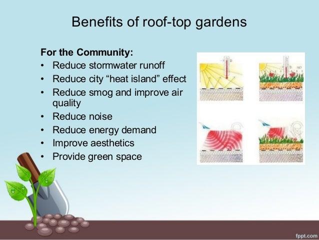 garden space  7. Roof top gardening