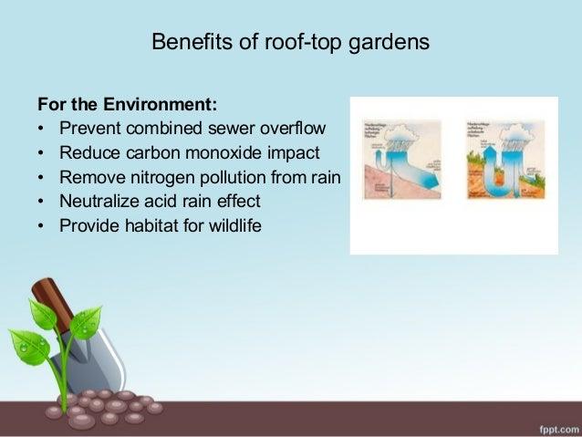 Benefits of roof top gardens  8. Roof top gardening