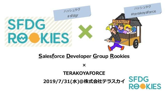 Salesforce Developer Group Rookies × TERAKOYAFORCE 2019/7/31(⽔)@株式会社テラスカイ ハッシュタグ #sfdgr ハッシュタグ #terakoyaforce