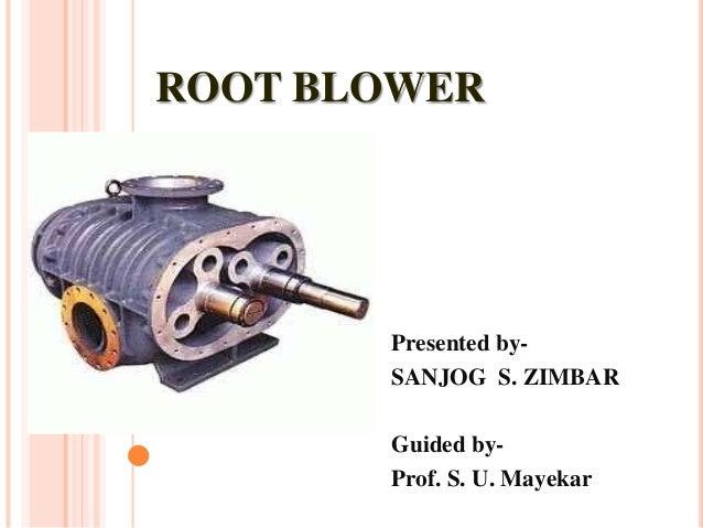 Root blower
