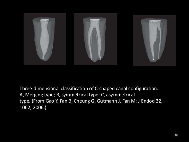 C shaped canal pdf merge