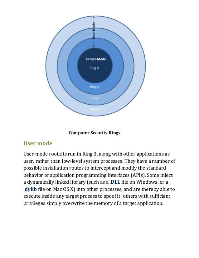 computer security term papers