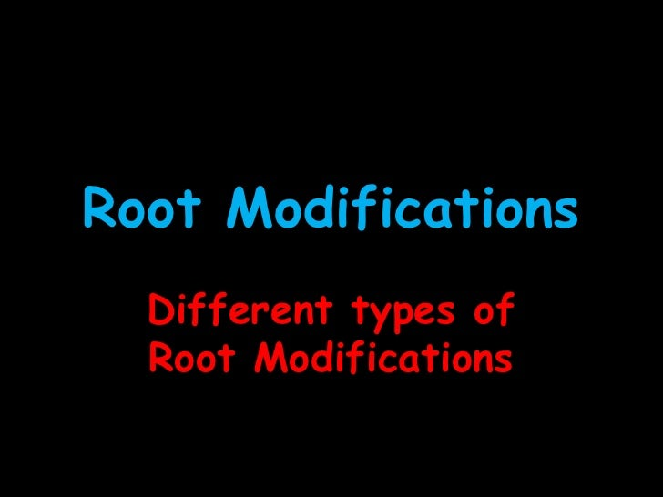 Root Modifications  Different types of  Root Modifications