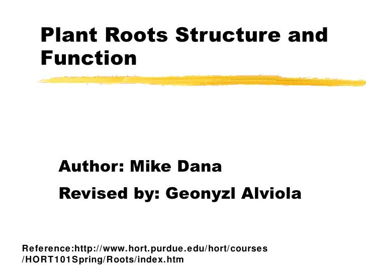 Plant Roots Structure and Function Author: Mike Dana Revised by: Geonyzl Alviola Reference:http://www.hort.purdue.edu/hort...