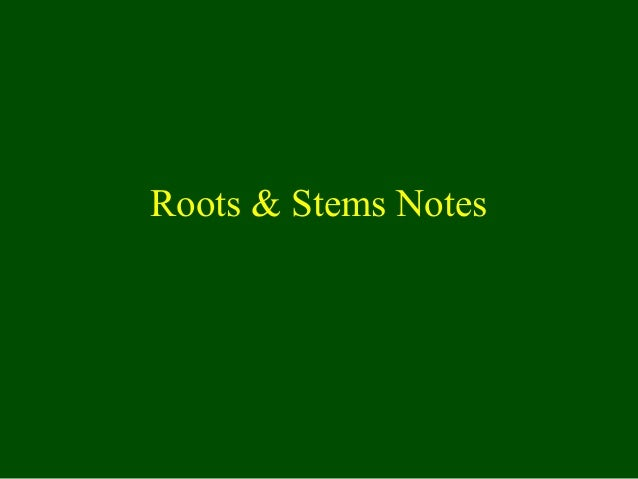 Roots & Stems Notes