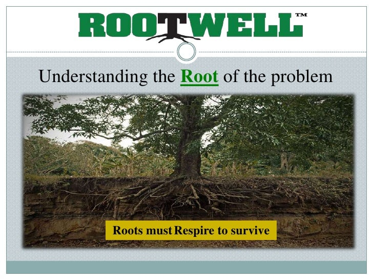 Understanding the Root of the problem              Roots must Respire to survive