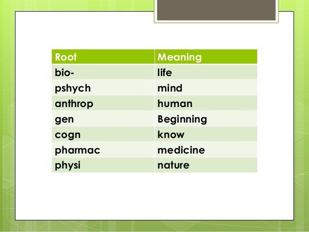 Root words prefixes-suffixes