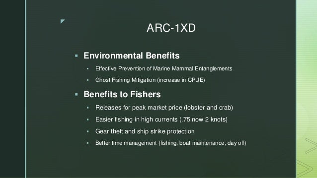 Preventing Whale Entanglements while improving the POT fishers business Slide 2