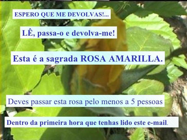 ESPERO QUE ME DEVOLVAS!... LÊ, passa-o e devolva-me! Esta é a sagrada ROSA AMARILLA. Deves passar esta rosa pelo menos a 5...