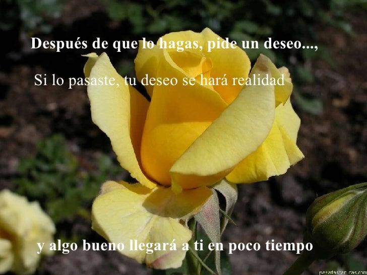OSALADI Rosa Eterna Luz Amarilla Rosa Amarilla Rosa Preservada en C/úpula de Vidrio para Siempre Regalos de Flores para El D/ía de San Valent/ín Cumplea/ños L/ámpara de Mesa del D/ía de Las Madres