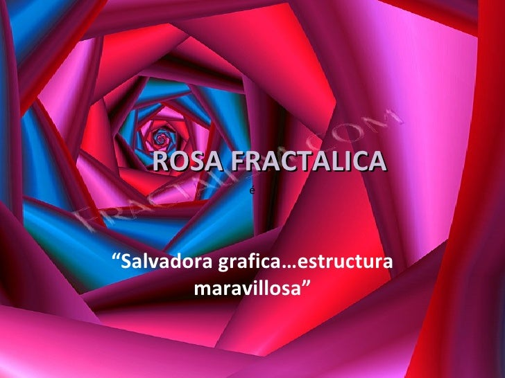 "ROSA FRACTALICA "" Salvadora grafica…estructura maravillosa"" é"