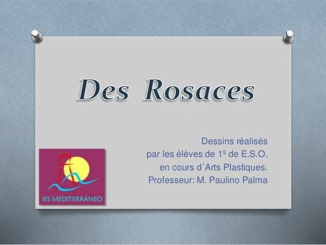 Dessins réalisés par les élèves de 1º de E.S.O. en cours d´Arts Plastiques. Professeur: M. Paulino Palma