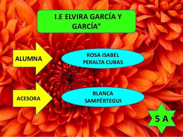 """I.E ELVIRA GARCÍA Y  GARCÍA""  ALUMNA  ACESORA  ROSA ISABEL  PERALTA CUBAS  BLANCA  SAMPÉRTEGUI  5 A"