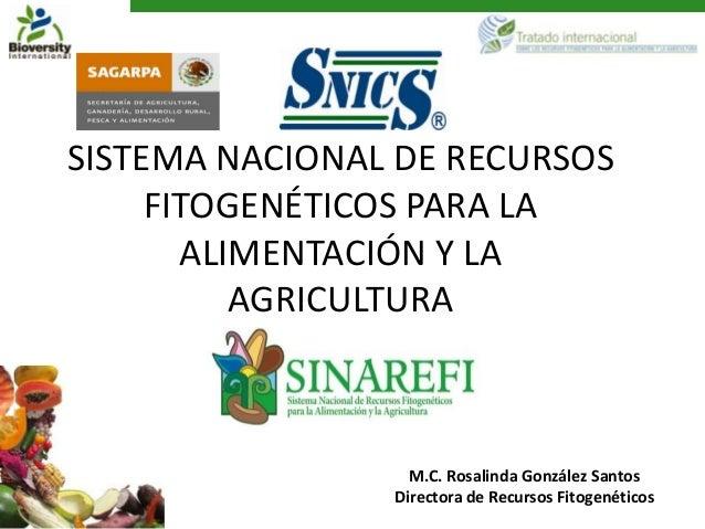 SISTEMA NACIONAL DE RECURSOS     FITOGENÉTICOS PARA LA       ALIMENTACIÓN Y LA          AGRICULTURA                  M.C. ...