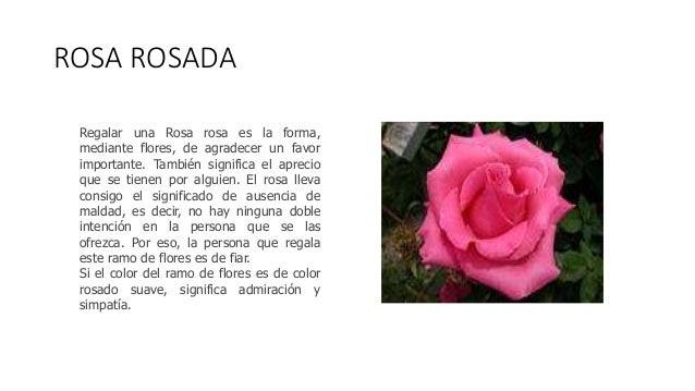 Rosas - Significado de los colores de las rosas ...