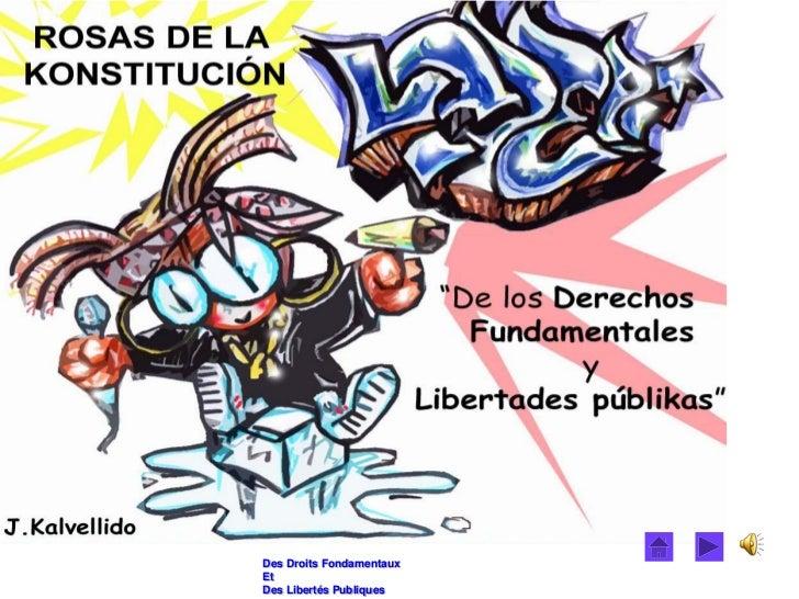 Des Droits FondamentauxEtDes Libertés Publiques