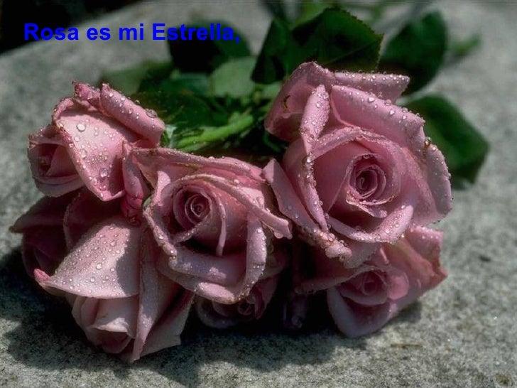 Rosa es mi Estrella,