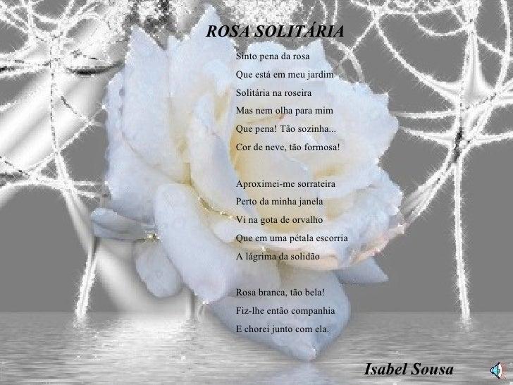 ROSA SOLITÁRIA Sinto pena da rosa Que está em meu jardim Solitária na roseira Mas nem olha para mim Que pena! Tão sozinha....