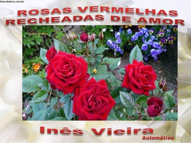 Criação: Inês Vieira Música: Ernesto Cortazar – Red Roses for a Blue Lady Imagens: Intenet inesdedes@gmail.com