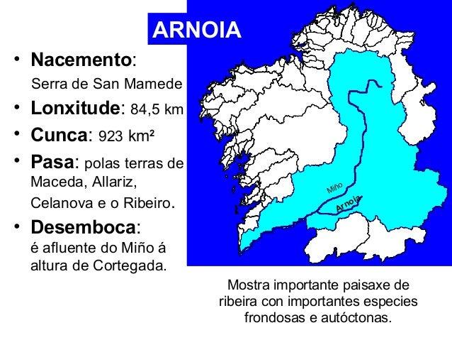 • Nacemento:  Serra de San Mamede  • Lonxitude: 84,5 km  • Cunca: 923 km2  • Pasa: polas terras de  Maceda, Allariz,  Cela...