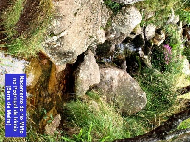 Nacemento do río Miño  no Pedregal de Irimia  (Serra de Meira)