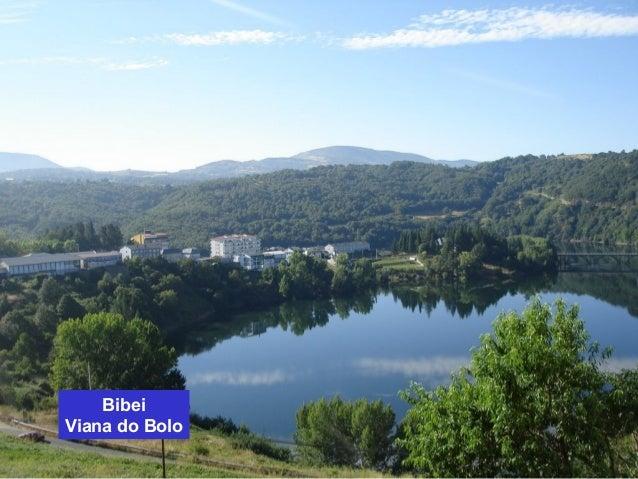 Bibei  Viana do Bolo