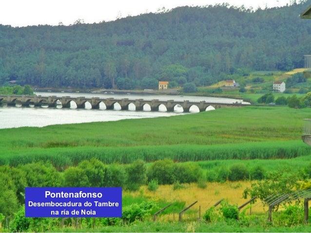 Pontenafonso  Desembocadura do Tambre  na ría de Noia