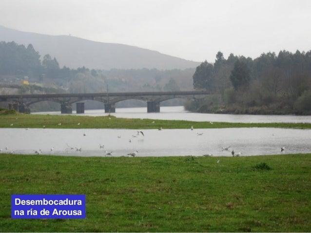 Desembocadura  na ría de Arousa