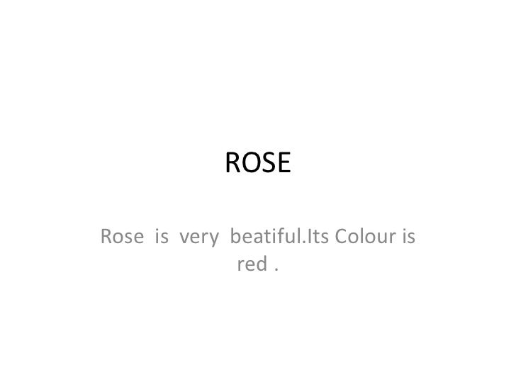 ROSE <br />Rose  is  very  beatiful.ItsColour is red .<br />