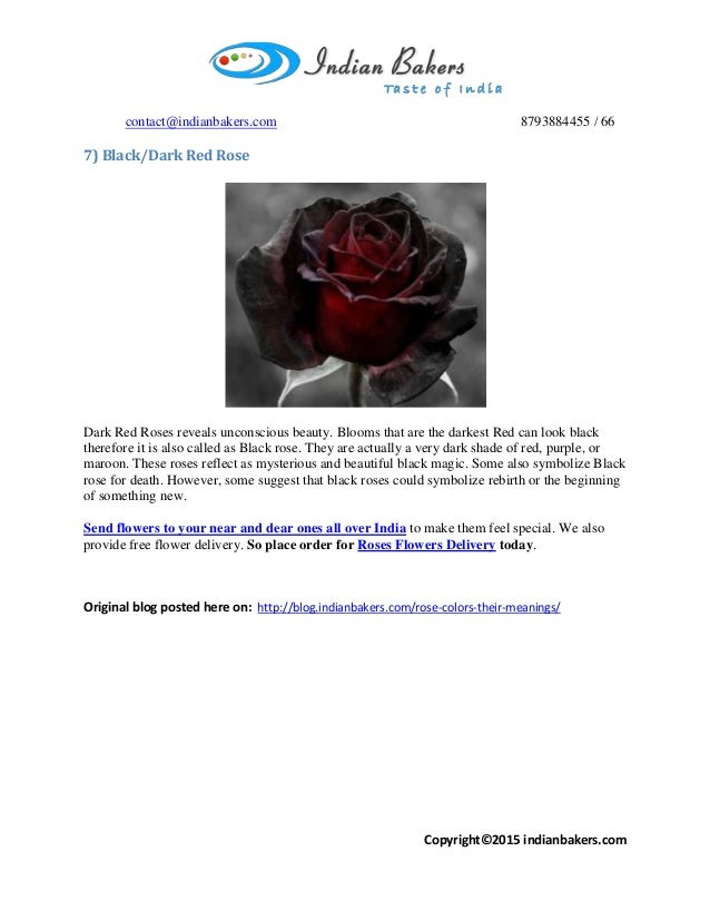 Discover Roses Meaning By Their Color Buy Send Online Roses Flowe