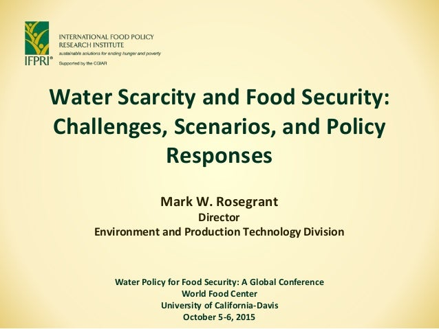 Water Scarcity and Food Security: Challenges, Scenarios, and Policy Responses Mark W. Rosegrant Director Environment and P...