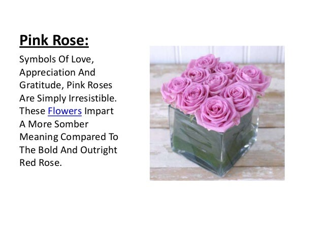 Rose its colors and numbers pink rose mightylinksfo