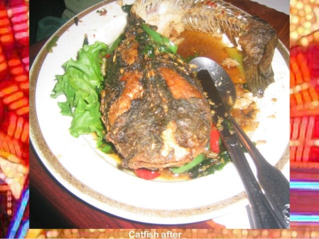 Catfish after
