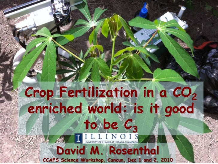 Crop Fertilization in a CO2enriched world: is it good        to be C3       David M. Rosenthal  CCAFS Science Workshop, Ca...