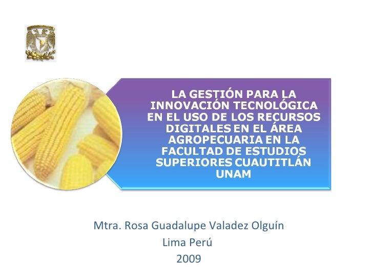 Mtra. Rosa Guadalupe Valadez Olguín Lima Perú  2009