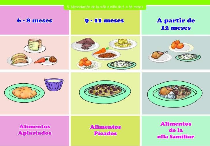 Rotafolio nutricion pma web - Alimentos bebe 8 meses ...