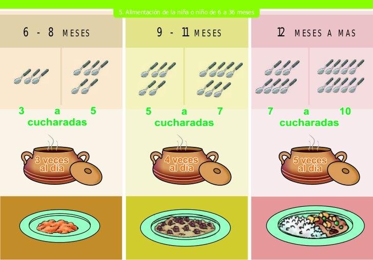 Rotafolio nutricion pma web - Cuanto debe pesar un bebe de 5 meses ...