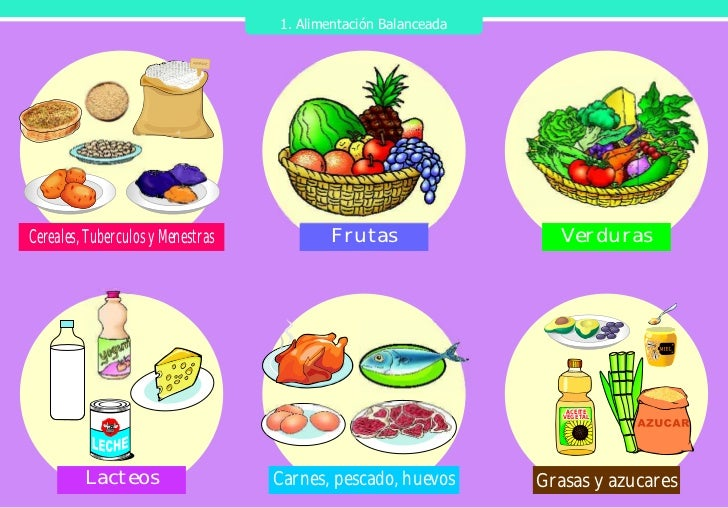 Rotafolio Nutricion Pmaweb