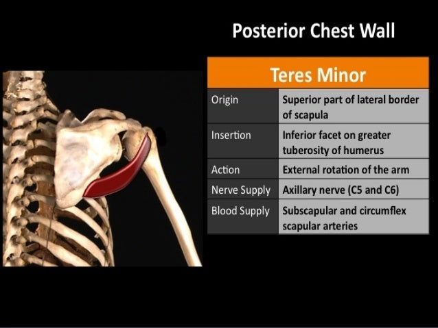 Rotator Cuff Injuries Dr Chintan Patel