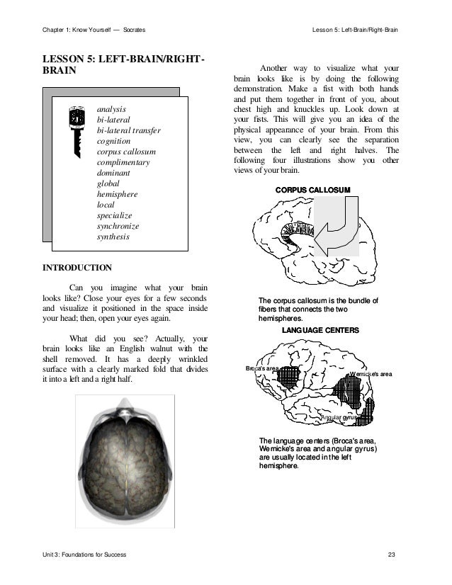 Chapter 1: Know Yourself — Socrates Lesson 5: Left-Brain/Right-Brain Unit 3: Foundations for Success 23 LESSON 5: LEFT-BRA...