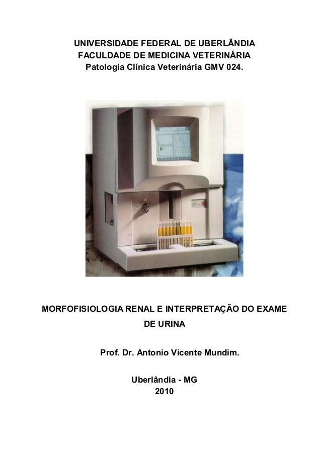 UNIVERSIDADE FEDERAL DE UBERLÂNDIA FACULDADE DE MEDICINA VETERINÁRIA Patologia Clínica Veterinária GMV 024. MORFOFISIOLOGI...