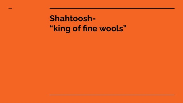 "Shahtoosh- ""king of fine wools"""