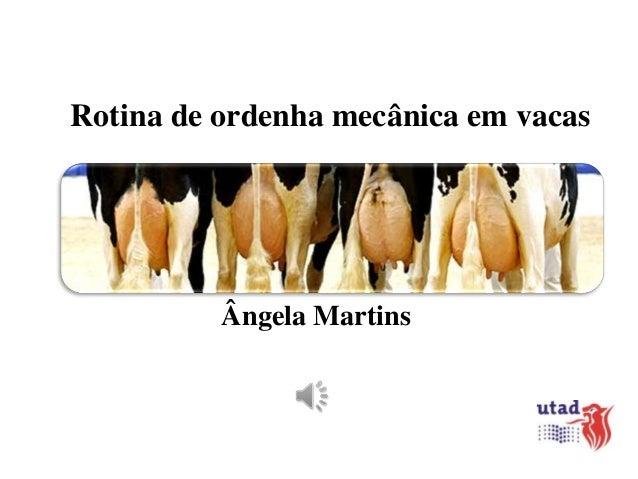 Rotina de ordenha mecânica em vacas  Ângela Martins