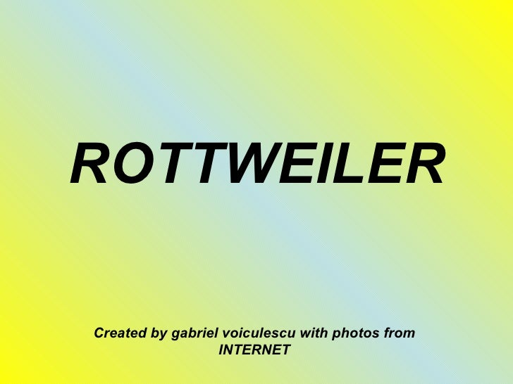 ROTTWEILERCreated by gabriel voiculescu with photos from                  INTERNET
