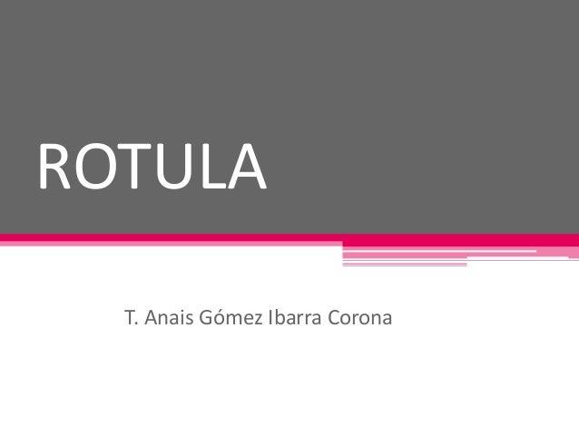 ROTULA  T. Anais Gómez Ibarra Corona