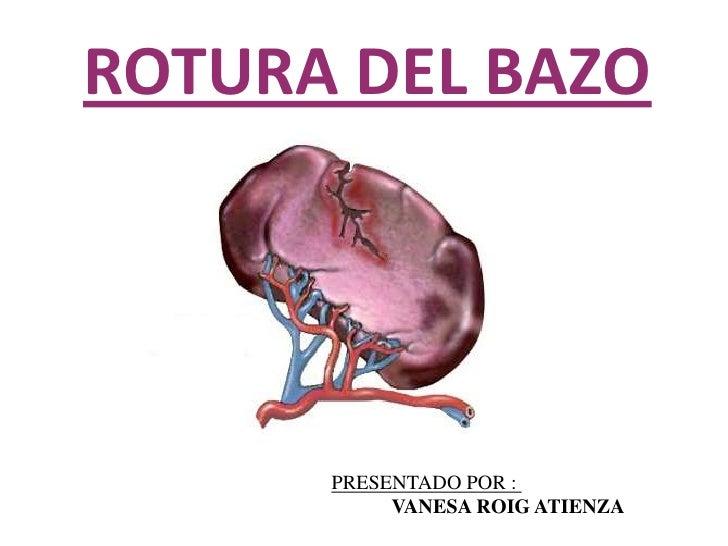 Bonito Bazo Foto Motivo - Anatomía de Las Imágenesdel Cuerpo Humano ...