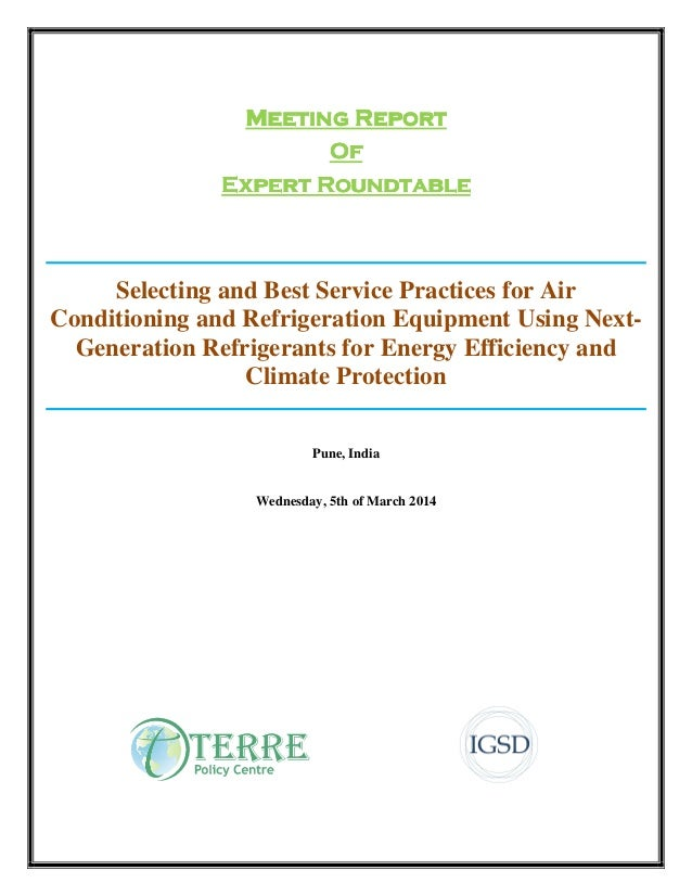 Meeting ReportMeeting ReportMeeting ReportMeeting Report OOOOffff Expert RoundtableExpert RoundtableExpert RoundtableExper...