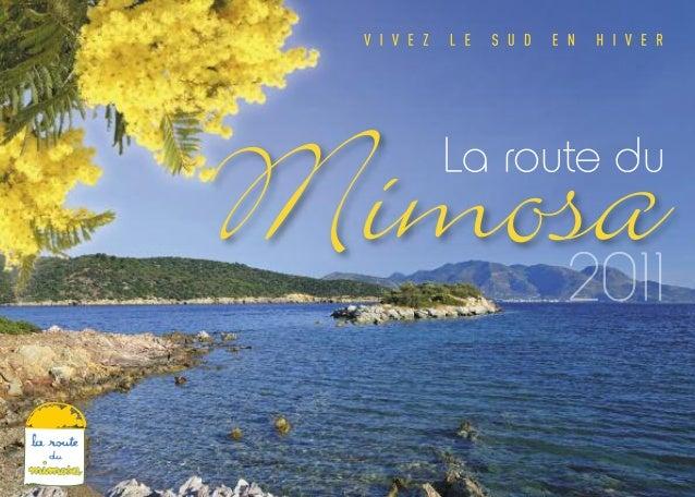 V I V E Z L E S U D E N H I V E R La route du Mimosa